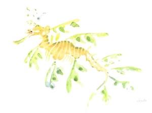 Leafy Sea Dragon - Irene Diamente